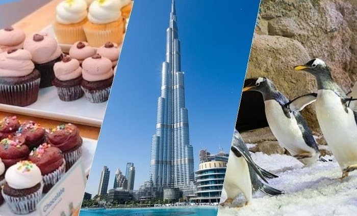 Combo Deal: Burj Khalifa with The Cafe Treat + Dubai Aquarium & Underwater Zoo + Penguin Cove