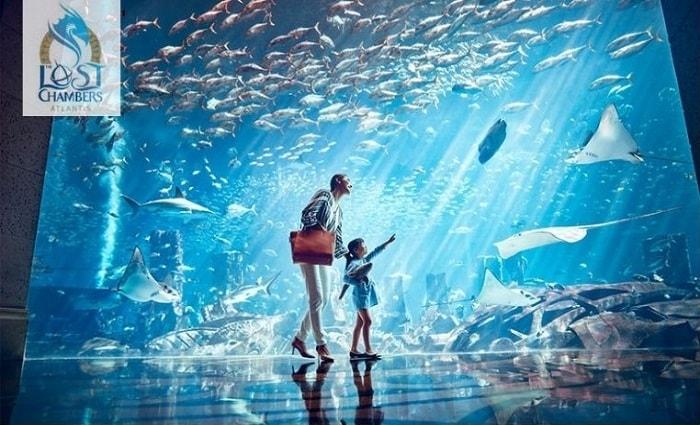 The Lost Chambers Aquarium at Atlantis The Palm