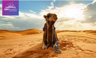 VIP Desert Safari Package by SBR Tourism
