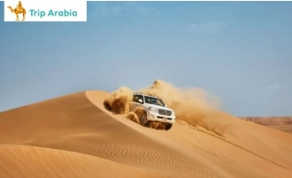 Evening Desert Safari with Centralized Transportation & Private pick up by (Bus, Car, Van), from AED 90 by Trip Arabia Travel & Tourism.