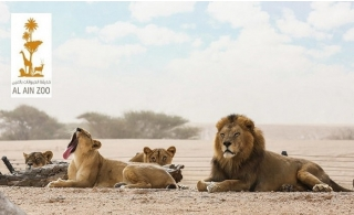 Al Ain Zoo Entry Tickets for Children and Adults