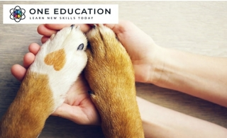 Animal Care and Psychology Online Course for only AED 29 from Edukators London.