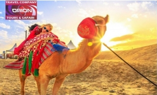 Desert Safari with BBQ, Non-veg. & Veg Dinner from Orion Vision Tours.
