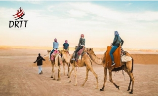 Ride the Arabian dunes with Desert Safari by Desert Ride Travel & Tour. Centralized Or Home Pickup Options Available.