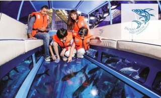 Explorer Experience package at Dubai Aquarium & Underwater Zoo with Glass Bottom Boat, Submersible Simulator & more.
