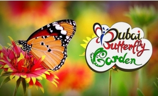 Butterfly Garden Tickets.