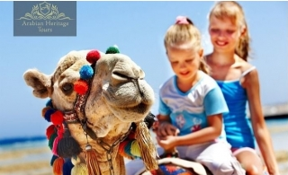 Desert Safari inclusive of BBQ dinner buffet, Entertainment, Activities and more by Arabian Heritage Tours LLC.