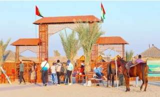 Premium Evening Desert Safari with BBQ Dinner & Live Entertainment.