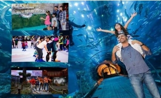 4 in 1 Combo Offer: Get your Dubai Aquarium & Underwater Zoo + VR Theme Park Super 7 Pass + Ice Rink tickets online and skip-the-line, for only AED 159.