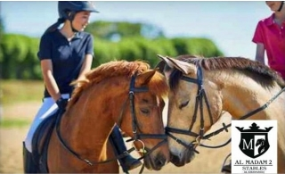 Fulfill your dream of riding horses with 45 Minute Horse riding lesson at Al Madam 2 Stables for only AED 99. Book now!
