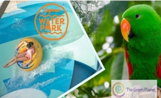Laguna Waterpark Ticket with All You Can Eat + Green Planet Ticket for only AED 150.