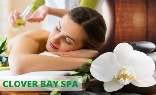 Relaxing Oil Therapy, 4 Hands Therapy or Hot Stone Massage from AED 69 at Clover Bay Spa Business Bay.