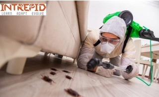 Pest Control Service valid for up to five-bedroom apartment from Intrepid starting at AED 145 Only.