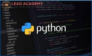 Python Programming Course from Lead Academy.