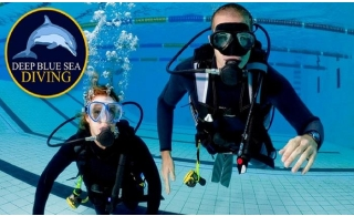 Scuba Diving Course with International License at Deep Blue Sea Diving Company, starting at AED 899