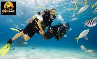 Scuba Diving and Snorkeling Experience in Fujairah UAE, starting from AED 99 by Extreme Water Sports.