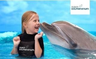 Swimming with Dolphins at Dubai Dolphinarium