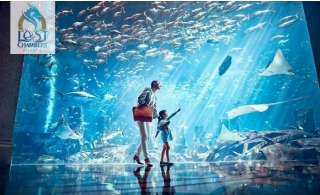 The Lost Chambers Aquarium at Atlantis The Palm from only AED 60.