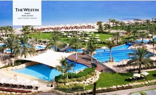 5* The Westin Dubai Mina Seyahi Beach Resort & Marina Stay with Halfboard and Jungle Bay Access.