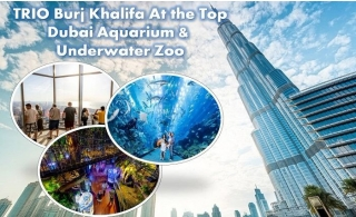 Trio Package Burj Khalifa, Dubai Aquarium, & Underwater Zoo tickets.