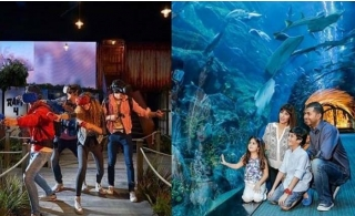 3 in 1 Combo Offer: Get your Dubai Aquarium & Underwater Zoo + VR Theme Park Super 7 Pass online tickets.