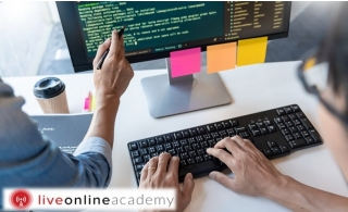 Web Development Course from Live Online Academy, for AED 17.
